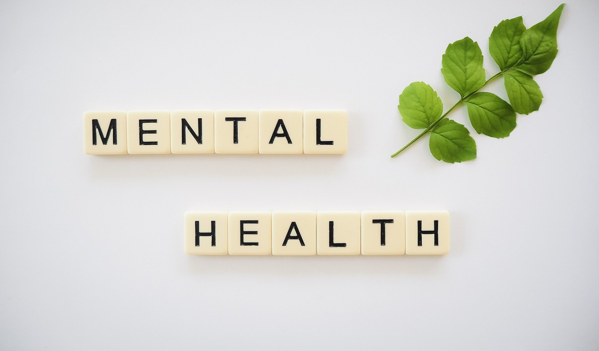 Here Is How You Can Use Social Media to Promote Mental Health